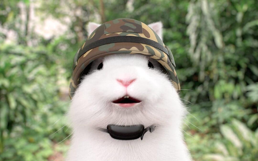 DBS | Multiplier NSF Bunny